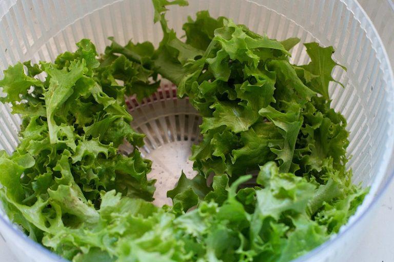migliore-centrifuga-per-insalata