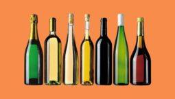 le-bottiglie-da-vino