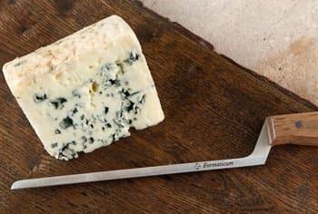 Coltello-per-formaggio-fresco