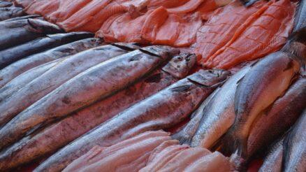 Pesce-di-stagione