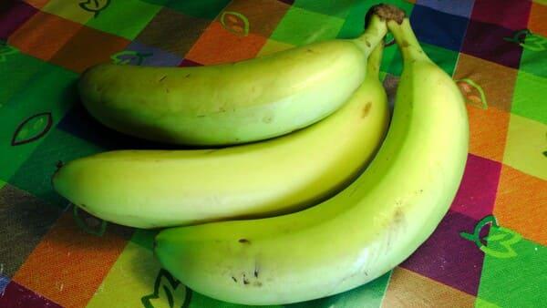 Banana-Cavendish-Gigante