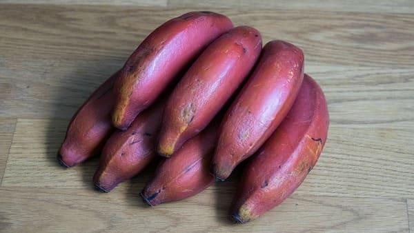 Banane-Rosse